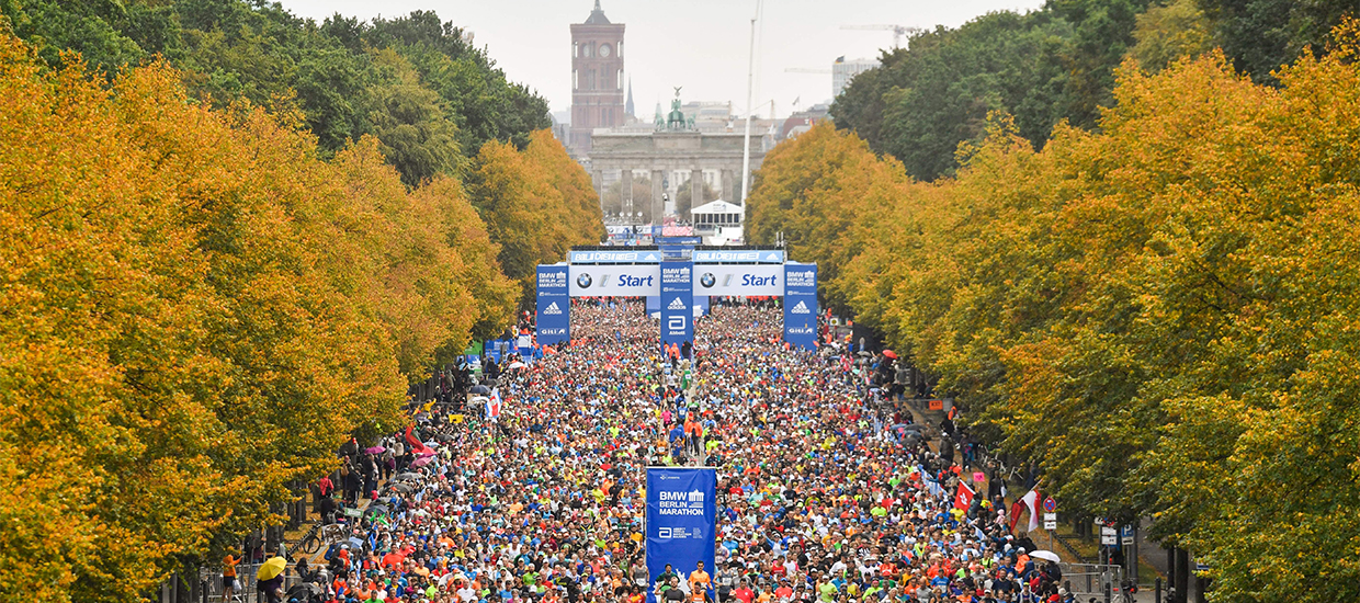 "2020 Berlin Marathon ""cannot take place"" due to new regulations – but what does this mean?"
